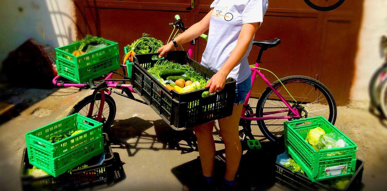 Budapest, Hungary: Cargo-Bikes Reduce Transport Emissions, Build Alternative Economy