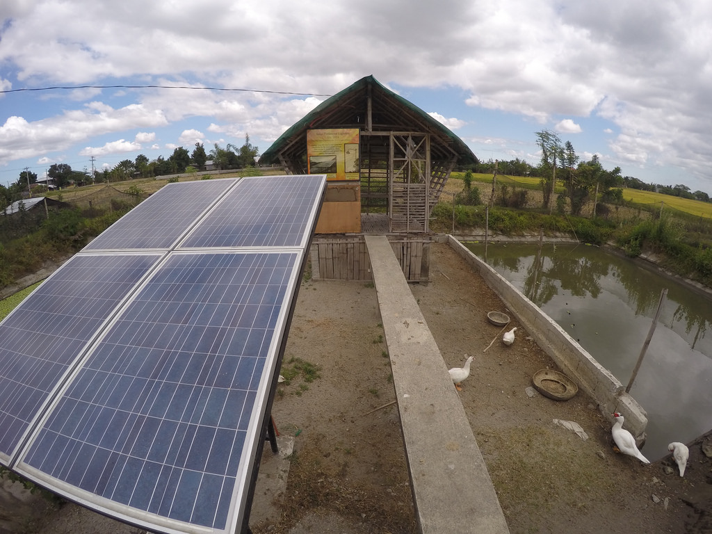 3 Steps to Building Just Transition Now with a Permanent Community Energy Cooperative