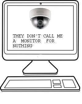 20 Surveillance Monitor