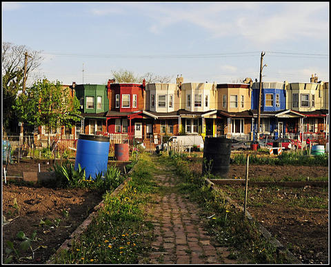 Glenwood Green Acres is a community garden built on formerly vacant land in North Central Philadelphia.